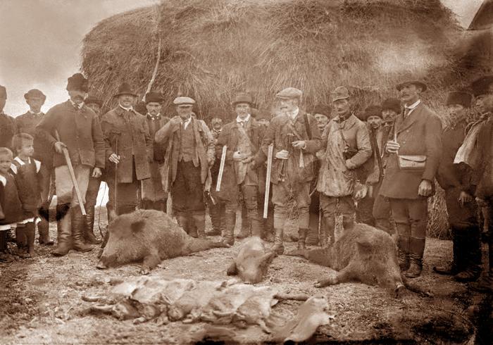 Egy régi vadászat a vadászok és elejtett állatok tetemeivel. A régi, megsárgult kép kitisztult a fotórestaurátor keze nyomán.